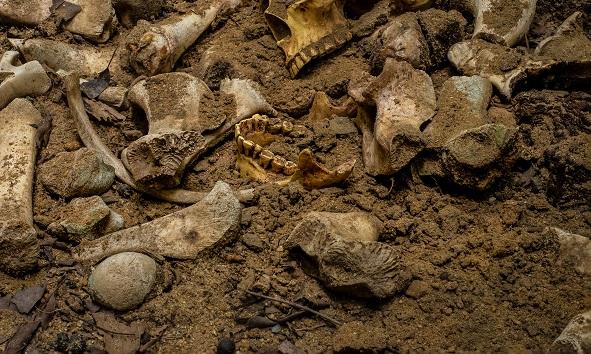 Método de excavación