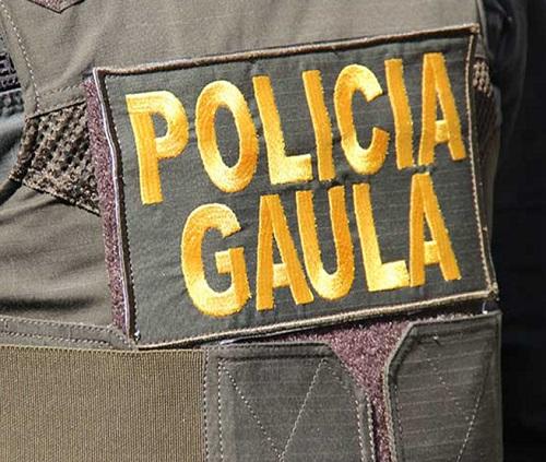 Gaula Policía otro golpe duro a delincuentes